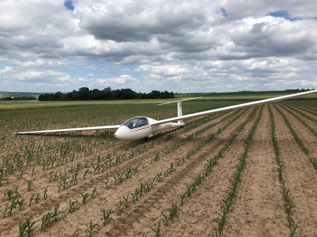 Notlandung eines Segelfliegers im Feld
