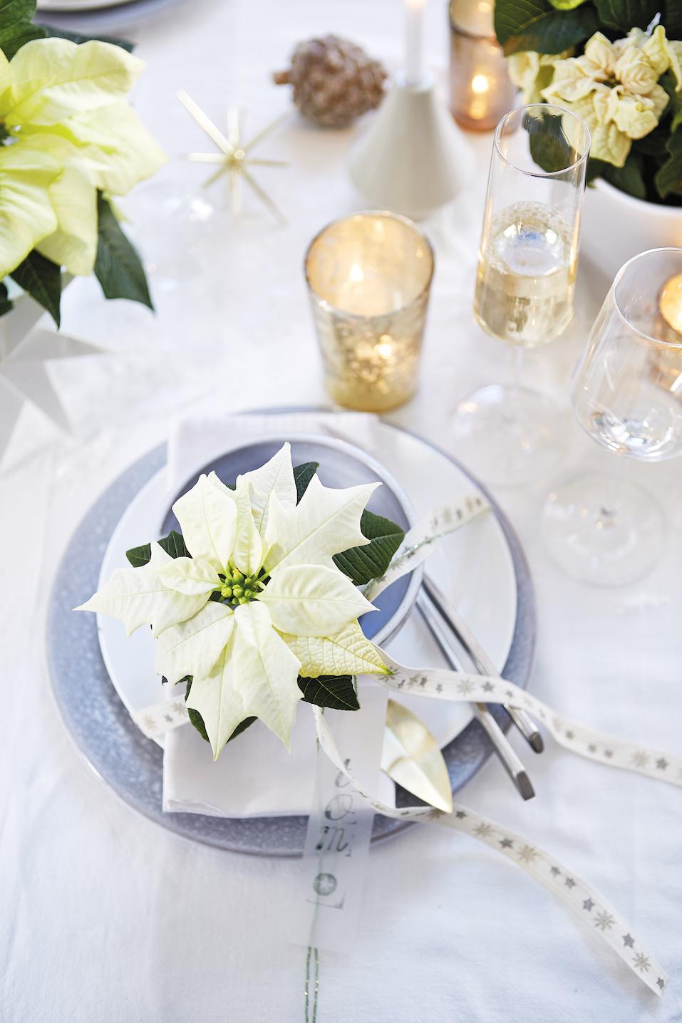 Ein Vielseitiger Tischgenosse Festliche Tischdekorationen Mit