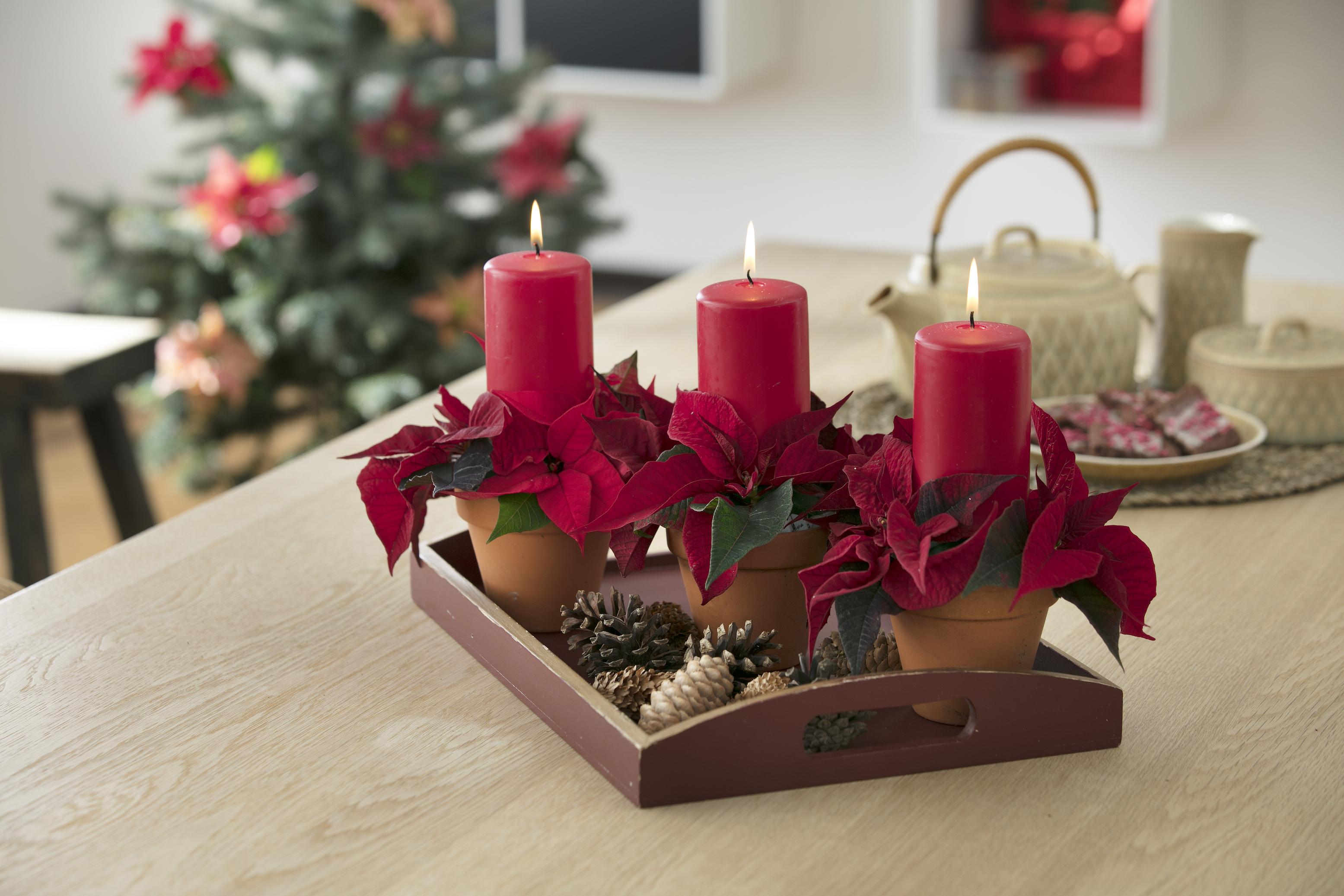 Aufs Tablett Gebracht Dekorative Geschenkideen Mit Dem