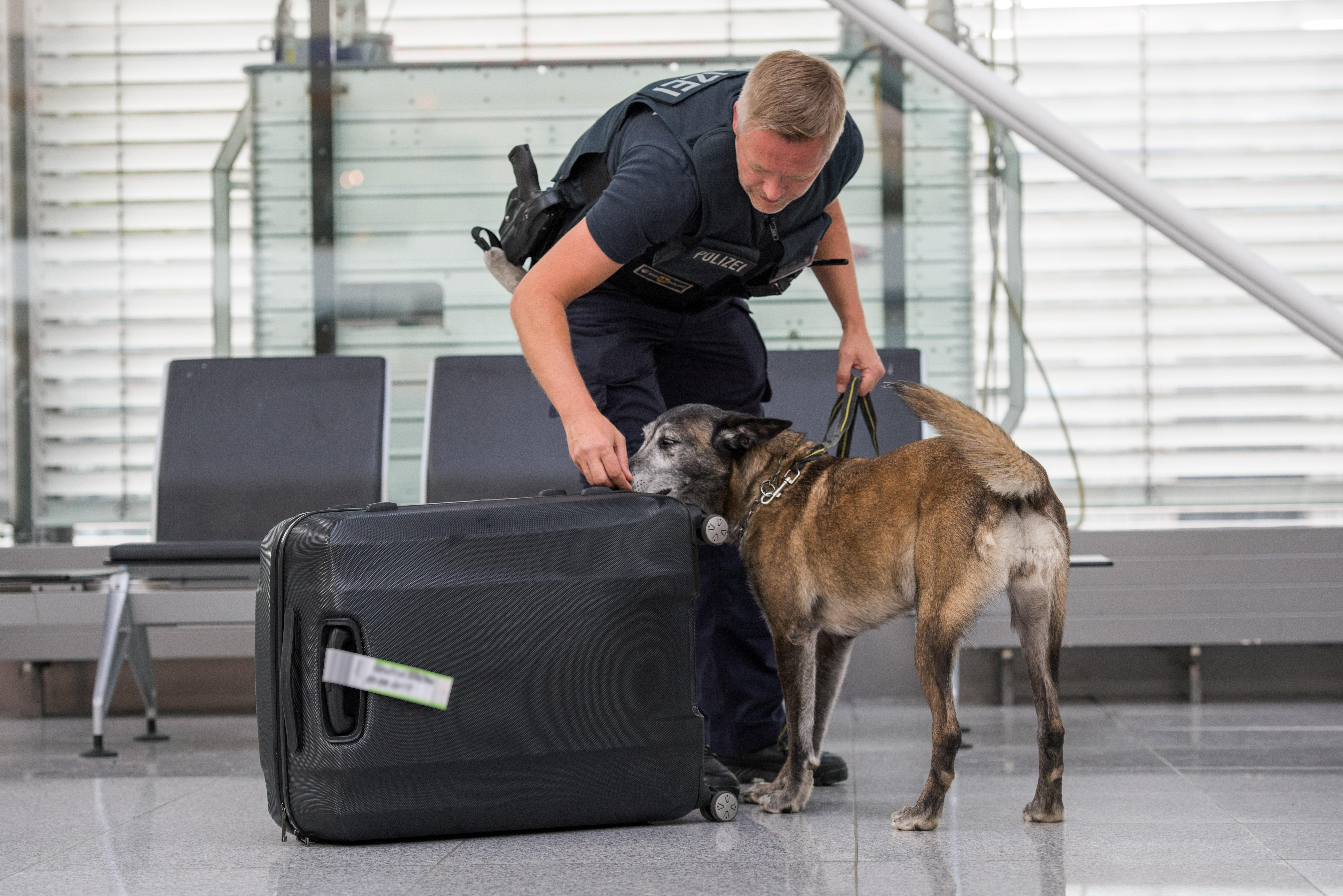 ▷ Bundespolizeidirektion München: Stehengelassener Koffer bringt ...