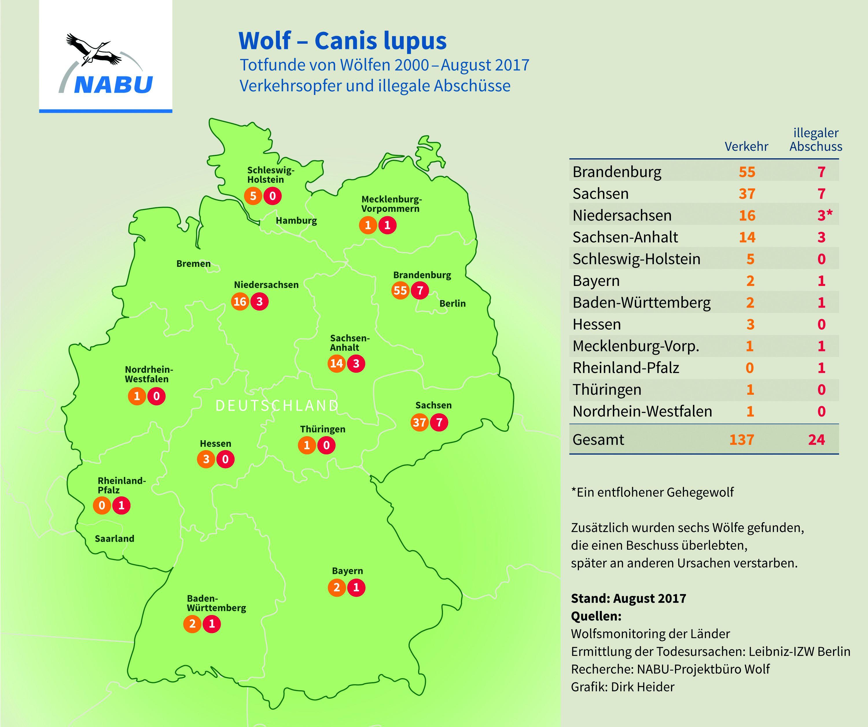 Wölfe In Brandenburg Karte.Nabu Wolf In Baden Württemberg Illegal Erschossen 24 Fall In