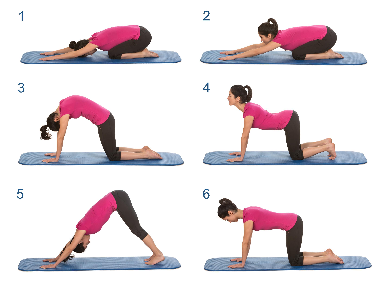 Top ▷ Rückenyoga: Die besten Übungen für ein kräftiges Kreuz &IQ_25