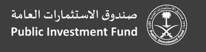 The Public Investment Fund