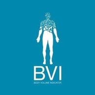BVI America LLC