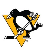 Pittsburgh Penguins/Covestro/Carnegie Mellon University