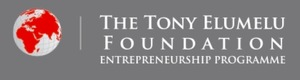 The Tony Elumelu Foundation (TEF)