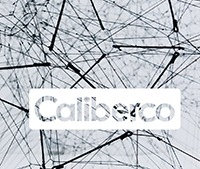 Caliber Consult GmbH