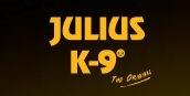 JULIUS K9 Team