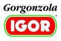 IGOR s.r.l.