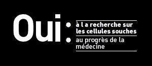 """Comité de chercheurs """"cellules souches"""""""
