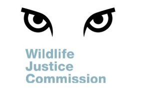 The Wildlife Justice Commission