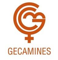 Gécamines - La  Générale Des Carrières Et Des Mines SA