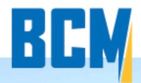 BCM Resources Corp.