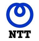 NTT in Deutschland