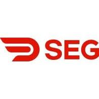 SEG Solar Inc.
