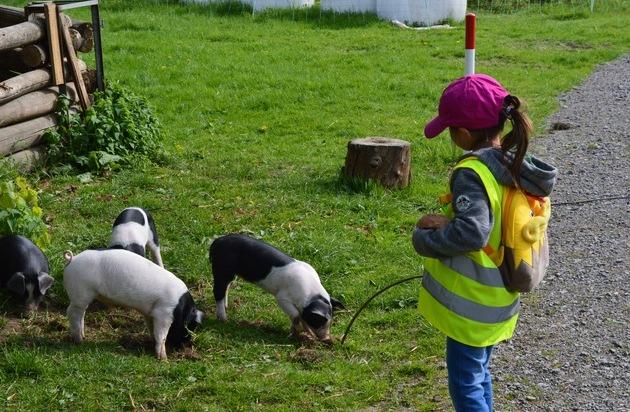 Aufwachsen mit tierischer Begleitung - Kinder profitieren von Tieren in der Kita - Presseportal.de