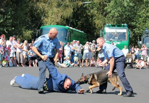 Die Hundeführer der Polizeidirektion Marburg zeigen eine sehenswerte Vorführung beim Sommerfest im Polizeioldtimer Museum in Marburg - hier bei der Festnahme eines Täters (Foto: Dersch)