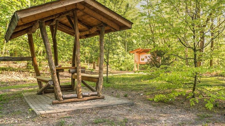 FriedWald Mühlenbecker Land (zur freien Verwendung)
