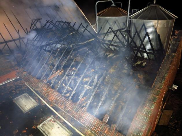 Die verendeten Tiere befanden sich in zwei Boxen im Obergeschoss, die für die Feuerwehr nicht mehr zugänglich waren, weil Teile des Dachstuhls eingestürzten.