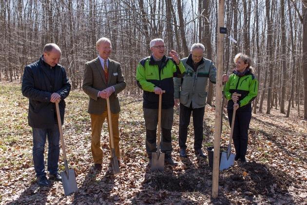 FriedWald Bad Berka: Baumpflanzung bei der Eröffnung des ersten FriedWaldes in Thüringen (Foto: FriedWald GmbH, zur freien Verfügung)