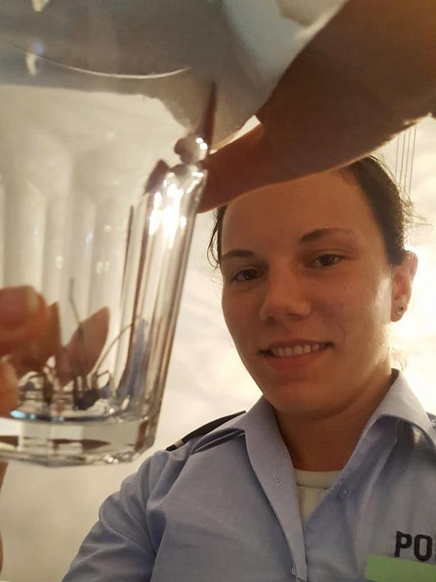 """Die """"festgenommene Spinne"""" im Wasserglas"""