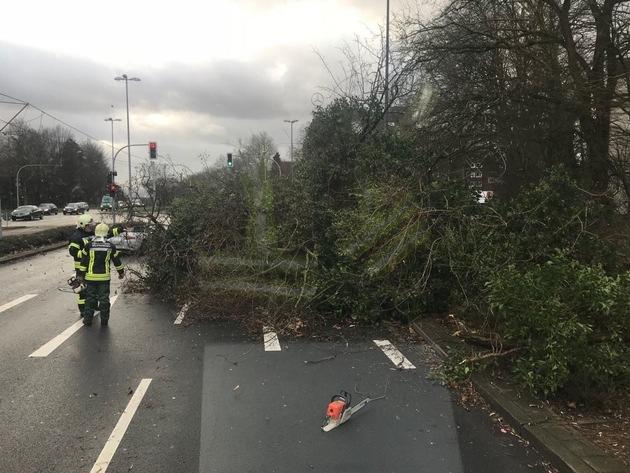 Vielfach sorgten umgestürzte Bäume für Verkehrsbehinderungen.