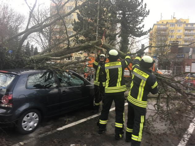 Orkan Friederike - Mettmann, Berliner Straße