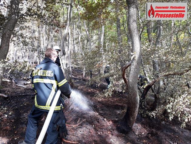 nur wenige Quadratmeter Waldboden brannten