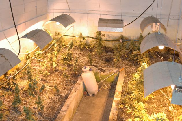 POL-H: Polizei beschlagnahmt Indoorplantage