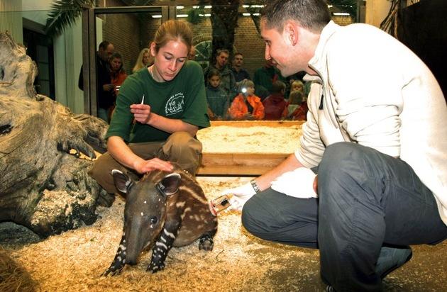 Mehr als 1.000 Studien in Zoos / Verband stellt erstmals Überblick zu Forschungsleistungen vor