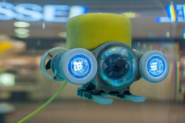 """Sonderausstellung """"Ozeane im Wandel"""" ab 4. Dezember im Klimahaus"""