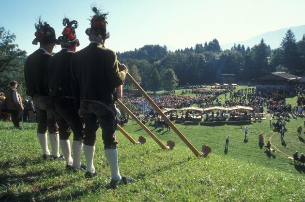 Schottische Highlander feiern Tiroler Tradition - BILD