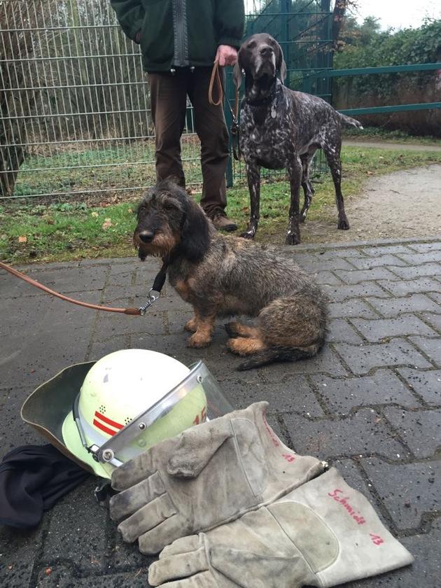 FW-D: Hund aus Erdloch befreit