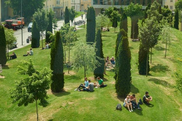Die modellierte Rasenlandschaft im südlich gelegenen Teil des Campus (Foto: Michael Wiedemann)