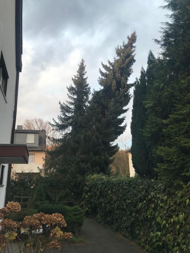 Sturmschaden in Bergisch Gladbach