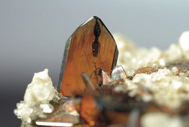 ASCMF: Pas de parc national sans les cristalliers