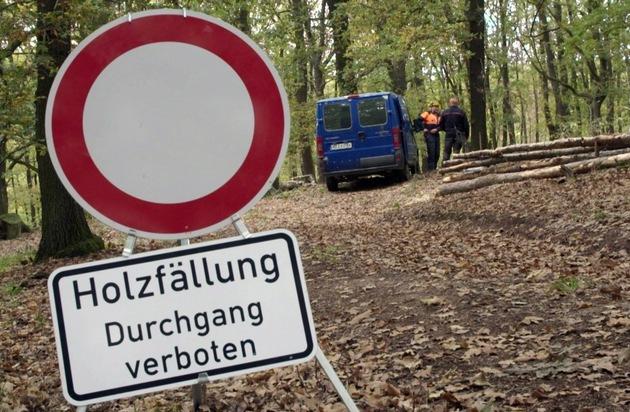 Wald und Elbe: MDR-Reihe