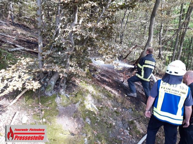 Spaziergänger entdeckten das Feuer neben einem Weg