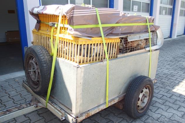 POL-PDNW: Polizeiautobahnstation - Polizei stoppt Tiertransport auf der Autobahn