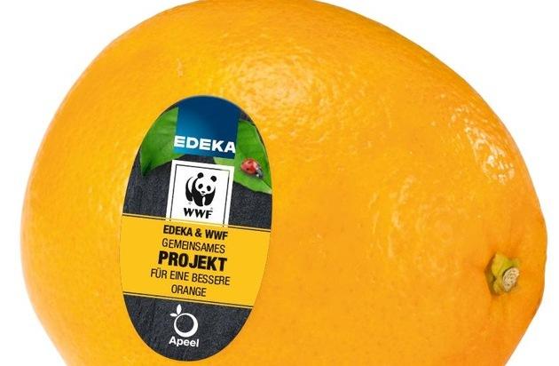 Kampf gegen Foodwaste: EDEKA und Apeel machen jetzt auch Zitrusfrüchte länger haltbar