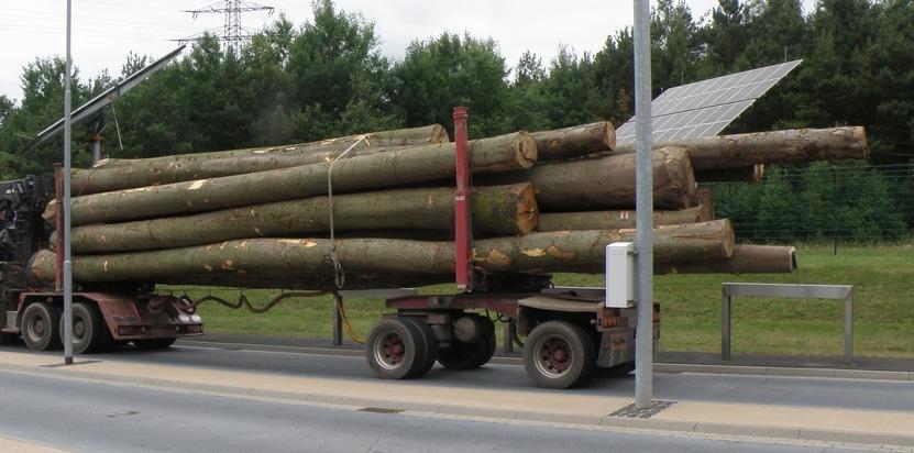 Überladener Holztransporter