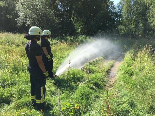 Feuerwehr Bergisch Gladbach rettet Nachwuchs der bedrohten Gelbbauchunken vor Austrocknung