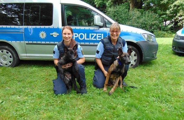 Polizeihundestaffel Karlsruhe