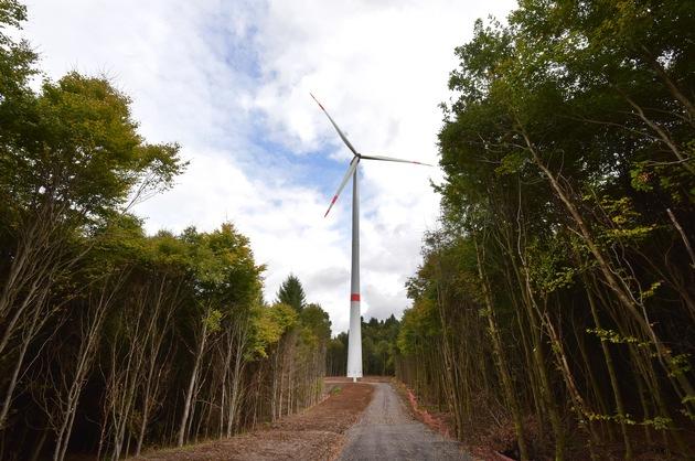 Trianel Erneuerbare Energien baut Windenergie- und PV-Portfolio weiter aus