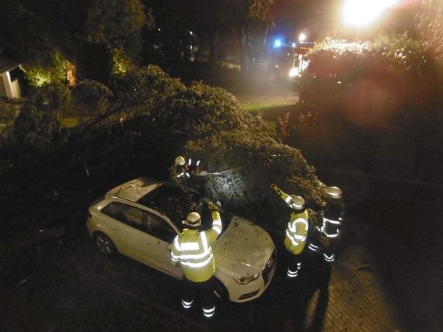 Bäume waren auf Fahrzeuge am Oberen Ahlenbergweg gefallen