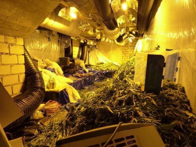 POL-BI: Weiterer Nachtrag zu: Kriminalpolizei hebt Drogenplantage aus. 12 Personen festgenommen