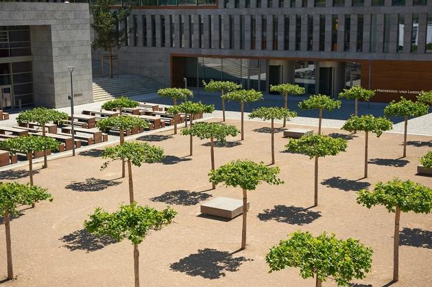 Der Platanenhain - der zentralen Platz vor Mensa und Bibliothek (Foto: Michael Wiedemann)