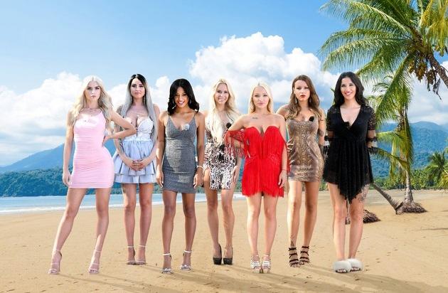 Vom Bikini-Model bis zum Schlager-Sternchen Diese sieben Beautys gehen bei