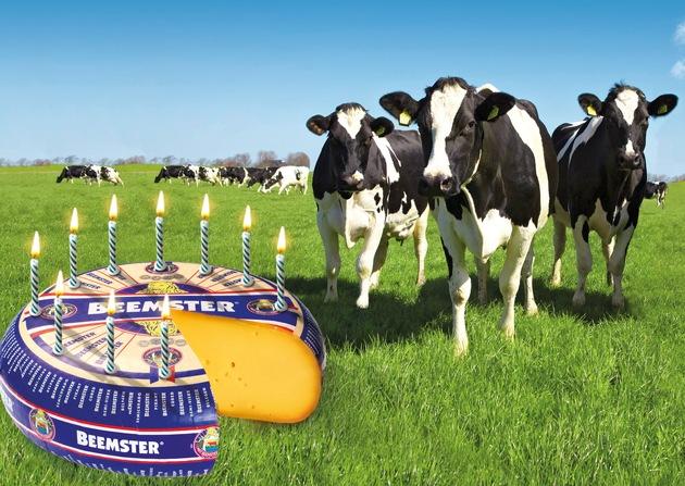 """Diese Kühe werden seit 10 Jahren von """"Caring Dairy"""" verwöhnt, dem weltweit ersten Nachhaltigkeitsmanagement-System für Milchhöfe. Mehr Tierwohl, bessere Tiergesundheit und ein immer tiergerechteres Leben auf Weide und Kuhstall macht die Kühe glücklich und ihre Milch köstlich für den Beemster-Käse. Ihr """"tierische Wohlbefinden"""" verdanken sie auch dem """"Kuh-Kompass"""", einem eigens entwickelten Messinstrument für Tierwohl. Weiterer Text über ots und www.presseportal.de/nr/66344 / Die Verwendung dieses Bildes ist für redaktionelle Zwecke honorarfrei. Veröffentlichung bitte unter Quellenangabe: """"obs/Beemster / Cono Kaasmakers"""""""