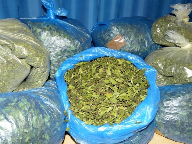 ZOLL-M: Zoll deckt Rauschgiftschmuggel mit Khat auf / 450 Kilogramm sichergestellt